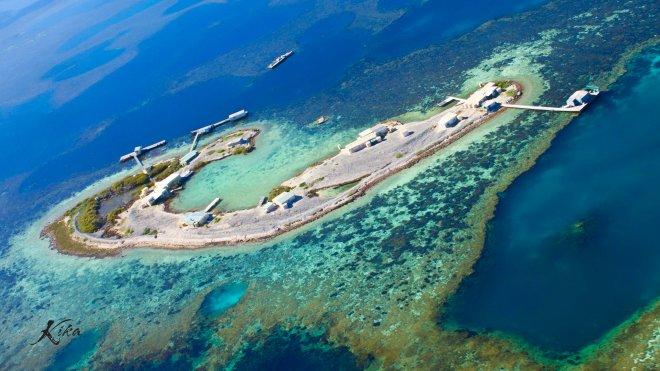 Davis Island