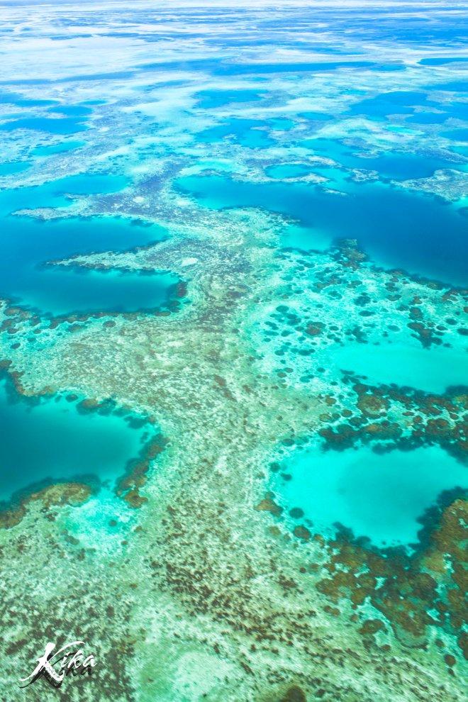 Reef at Abrolhos Island